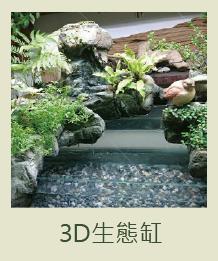 3D生態缸